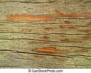arrugado, madera