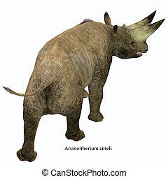 Arsinoitherium Mammal Tail