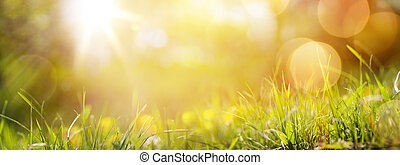 art abstract spring background or summer background with fresh grass