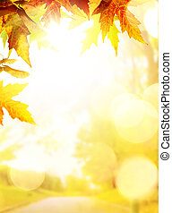 art autumn backgrounds with yellow leaves