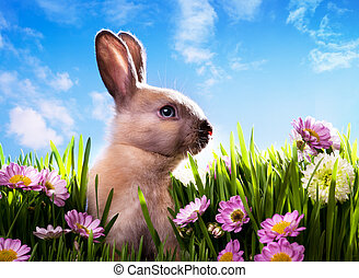 art baby Easter bunny on spring gre
