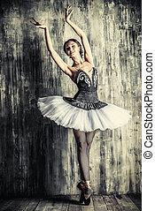 art ballet - Professional ballet dancer posing at studio...