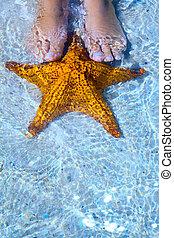 Art Beautiful female legs and starfish on the sea beach