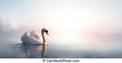 Art beautiful landscape with a swan floating on the lake -...