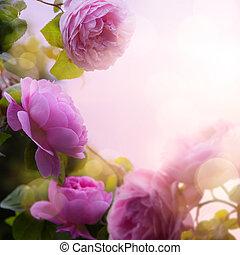 art Beautiful spring flowers background; roses garden