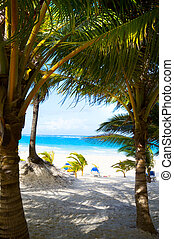 Art caribbean tropical sea beach