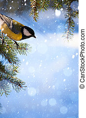Art Christmas card with tits on the Christmas tree and snow