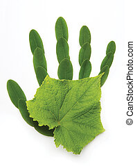 art Ecological symbol hand of nature