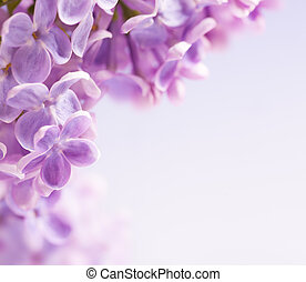 Art lilac flowers background