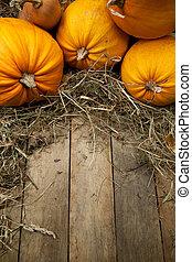 art orange pumpkins on wooden background - orange pumpkins...