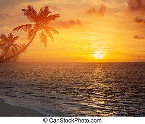 Art palm trees silhouette on sunset tropical beach
