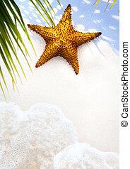 Art Summer Beach background; Tropical sea vacation
