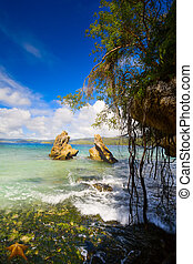 Art Tropical coast beach
