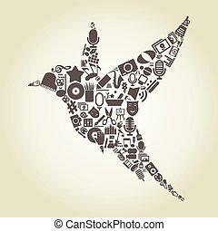 art2, uccello