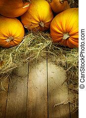 arte, ação graças, abóboras, outono, fundo