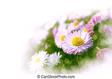 arte, abstratos, fundo, com, primavera, floral, motivo