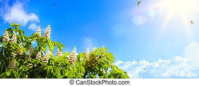 arte, abstratos, primavera, fundo, fundo, com, flores mola, ligado, céu azul, fundo