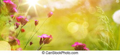 arte, abstratos, primavera, fundo, ou, verão, fundo, com, fresco, capim, e, flores