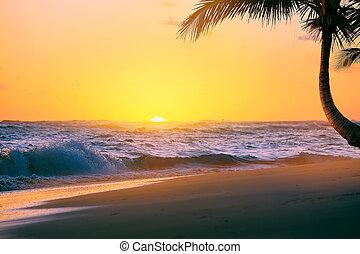 arte, bello, alba, sopra, il, spiaggia tropicale