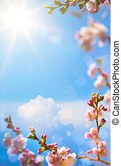 arte, bello, primavera, fioritura, albero, su, cielo, fondo