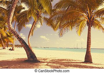 arte, bello, retro, spiaggia, vista, fondo