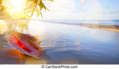 arte, cáscara, en, el, playa tropical, plano de fondo