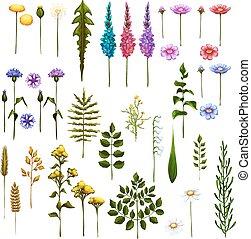 arte, cepillos, vector, diseño, floral, su