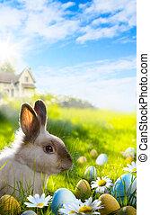 arte, coloridos, ovos páscoa, e, coelho, ligado, grama verde