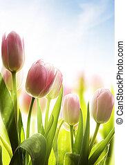 arte, flores salvajes, cubierto, con, rocío, en, el, luz del...