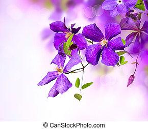 arte, flower., clematis, desenho, flores violetas, borda
