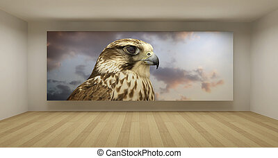 arte, habitación, espacio, concepto, imagen, halcón, limpio, vacío, 3d