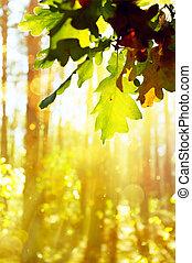 arte, hermoso, otoño, plano de fondo, con, hojas