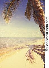 arte, hermoso, retro, playa, vista, plano de fondo