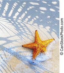 arte, ilha tropical, praia, verão, fundo
