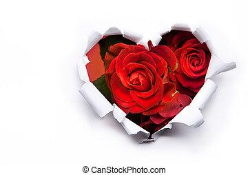 arte, ramo, de, rosas rojas, y, el, papel, corazones, en,...