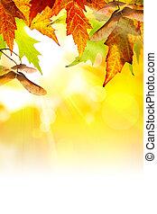 arte, resumen, otoño, plano de fondo