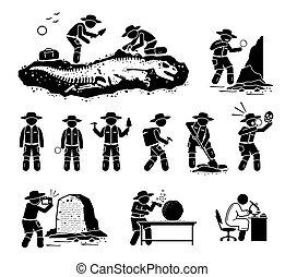 artefact, fossile, ancien, paleontologist, illustrations., creuser, dinosaure, découvrir, os, scientifique