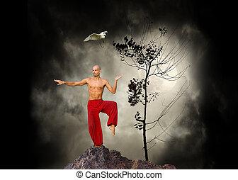 artes marciales, kung fu, plano de fondo