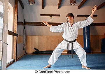 artes, practica, luchador, gimnasio, pelea, karate, marcial