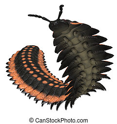 Arthropleura on White