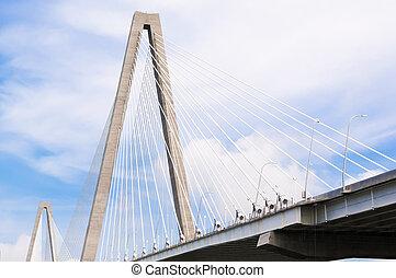 arthur, ravenel, jr, puente, encima, tonelero, río, en, charleston