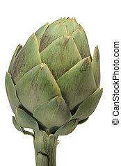 Artichoke - Close-up image of an artichoke with white...