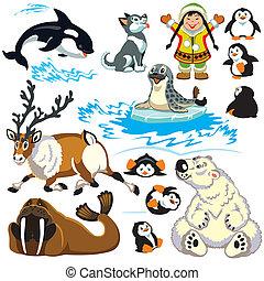 artico, set, animali, cartone animato