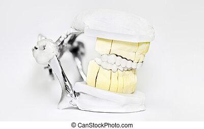 articulator, technisch, dental, zahnarzt, hintergrund, weißes, werkzeuge