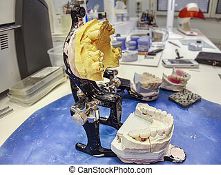 Articulator with gipsum cast and false tooth.