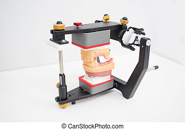 articulator with jaw model in the dental laboratory