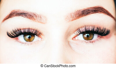 Artificial 4D lashes. eyelash extension procedure