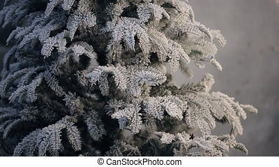 Artificial fir tree covered with frost without ornament...