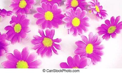 Artificial flower heads looping texture pattern closeup video