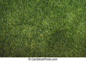 Artificial grass - Close up of green artificial grass